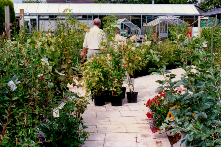 Outdoor Plant Area in the 1980's