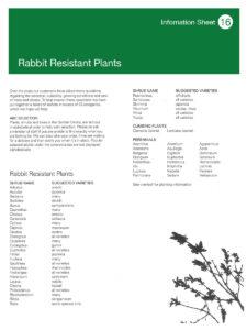 bgc-info-leaflet16