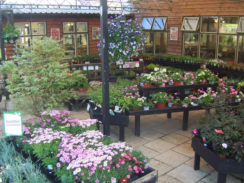 Main Outdoor Plant Department