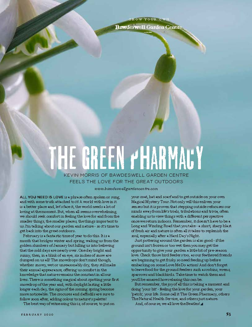 The Green Pharmacy - Our article in February edition of Feast Magazine - Out Now!